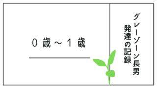 発達障害グレーゾーン長男小鉄のあゆみ~新生児から1歳~
